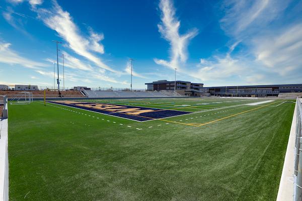 West Park, Roseville, Field